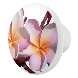 Tropical Plumeria Flowers Floral Knob Ceramic Knob