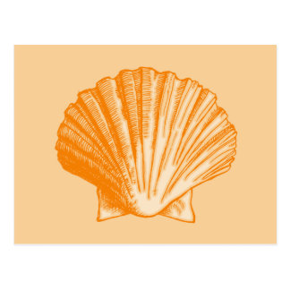 Tropical Protea Orange Sea Shell Postcard