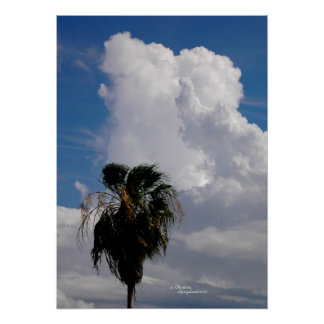 Tropical puffy storm clouds Palm tree Poster
