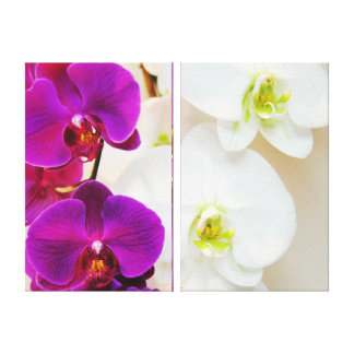 Tropical Purpel and White Orchids Canvas Print