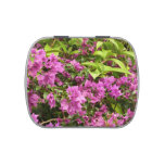 Tropical Purple Bougainvillea Candy Tin