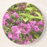 Tropical Purple Bougainvillea Drink Coaster