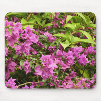 Tropical Purple Bougainvillea Mouse Pad
