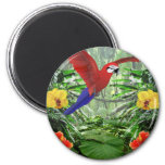 Tropical Rain Forest Magnets