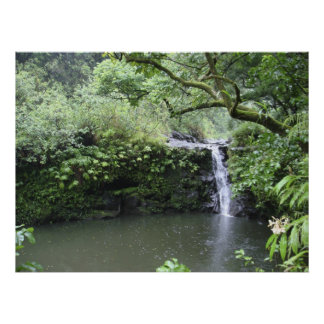Tropical Rain Forest Waterfall Poster