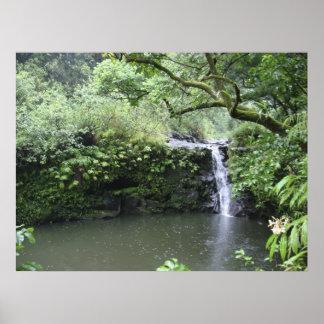 Tropical Rain Forest Waterfall Print