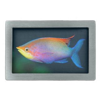TROPICAL RAINBOW FISH BELT BUCKLE
