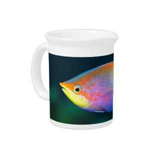 TROPICAL RAINBOW FISH MILK PITCHER