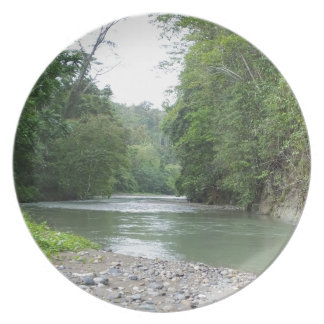 Tropical Rainforest and River Dinner Plate