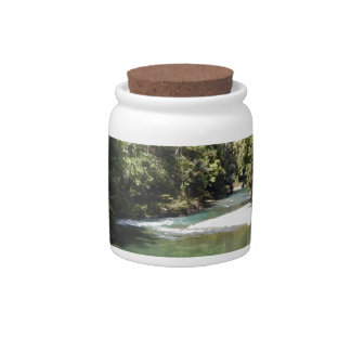 Tropical Rainforest and River in New Guinea Candy Dish