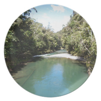 Tropical Rainforest and River in New Guinea Plate