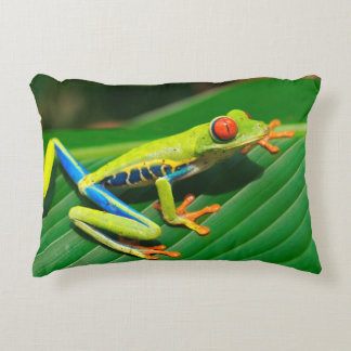 Tropical rainforest green red-eyed tree Frog Accent Pillow