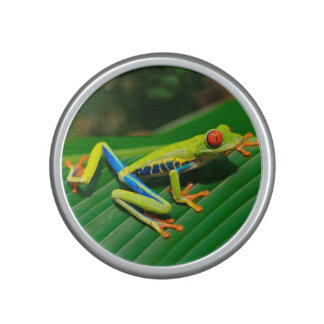 Tropical rainforest green red-eyed tree Frog Bluetooth Speaker