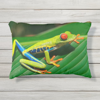 Tropical rainforest green red-eyed tree Frog Outdoor Pillow