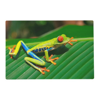 Tropical rainforest green red-eyed tree Frog Placemat