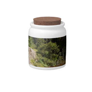 Tropical Rainforest of Tambrauw Moutains Candy Jar