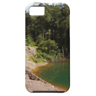 Tropical Rainforest of Tambrauw Moutains iPhone 5 Covers