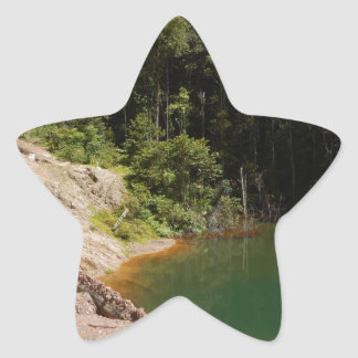 Tropical Rainforest of Tambrauw Moutains Star Sticker