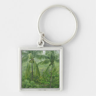 Tropical rainforest Silver-Colored square keychain