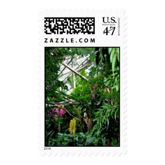 Tropical Ravine Postage Stamp