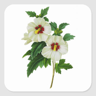 Tropical Red and White Hibiscus by Redoute Square Sticker