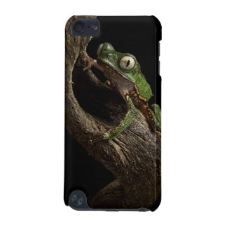 Tropical red eyed tree frog iPod touch (5th generation) cover