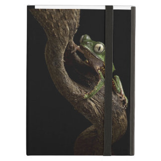 Tropical red eyed tree frog cover for iPad air