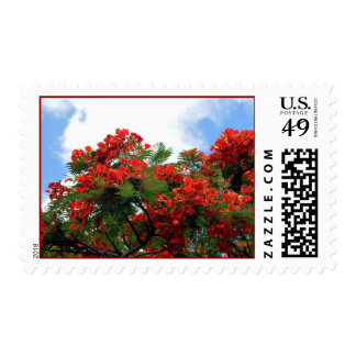 Tropical Red Flower Tree Postage