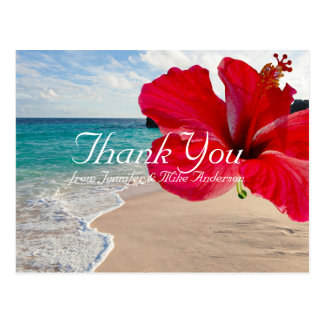 Tropical Red Hibiscus Pretty Beach Thank You Postcard