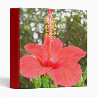 Tropical Red Hibiscus Rose Mallow 3 Ring Binder