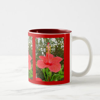 Tropical Red Hibiscus Rose Mallow Mugs
