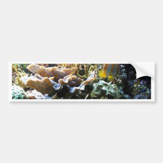 Tropical Reef 2 Bumper Sticker