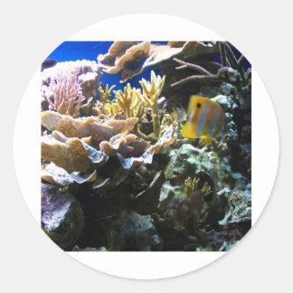 Tropical Reef 2 Sticker