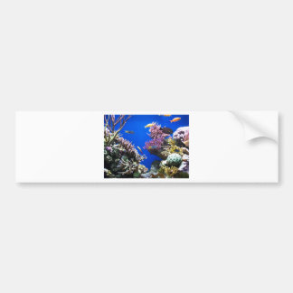 Tropical Reef Bumper Sticker