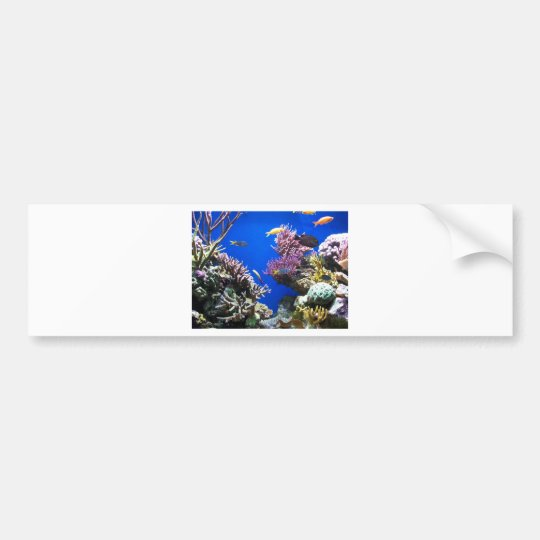 Tropical Reef Bumper Sticker