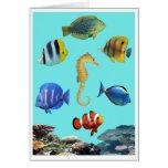 Tropical Reef Card