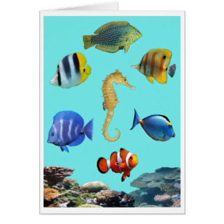 Tropical Reef Card