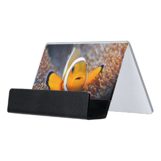 Tropical reef fish - Clownfish Desk Business Card Holder