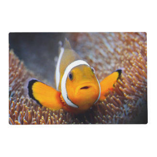 Tropical reef fish - Clownfish Placemat