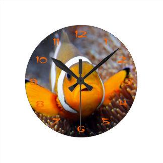 Tropical reef fish - Clownfish Round Clock