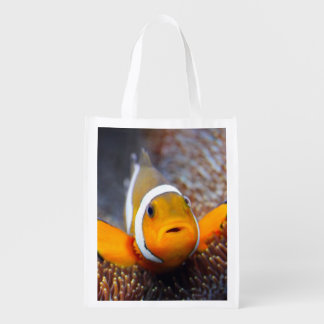 Tropical reef fish - Clownfish Grocery Bags