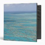 Tropical reef, Great Barrier Reef, Queensland, Binder