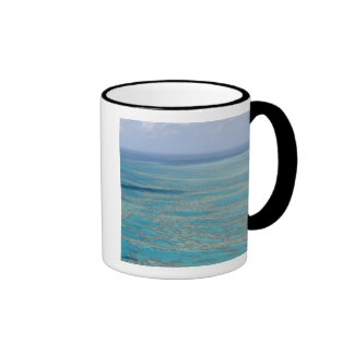 Tropical reef, Great Barrier Reef, Queensland, Ringer Coffee Mug