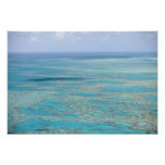 Tropical reef, Great Barrier Reef, Queensland, Photo Print