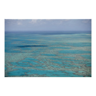 Tropical reef, Great Barrier Reef, Queensland, Poster