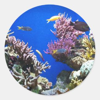 Tropical Reef Round Sticker