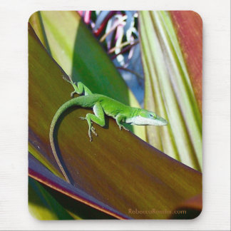 Tropical Reptile Mouse Pad