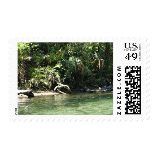 Tropical River Stamps