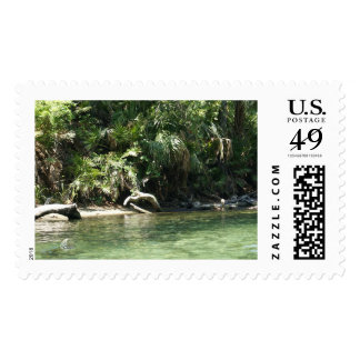 Tropical River Postage
