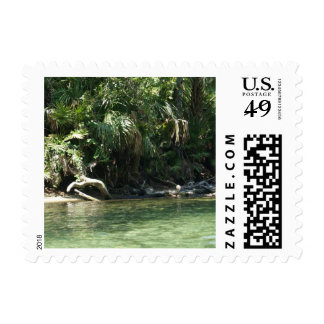 Tropical River Postage Stamps